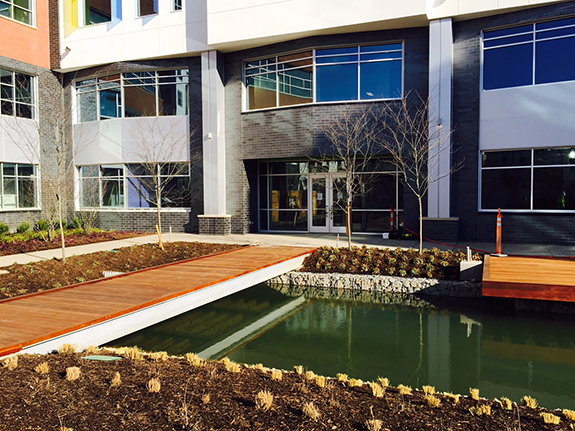 An inviting pond forms the focal point of the courtyard at the entrance to the new office building, which collects water from the roof. Overflow runs into a nearby rain garden and from there into an infiltration bed under the roadway.